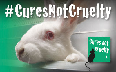Cures Not Cruelty Campaign - Animal Justice Project