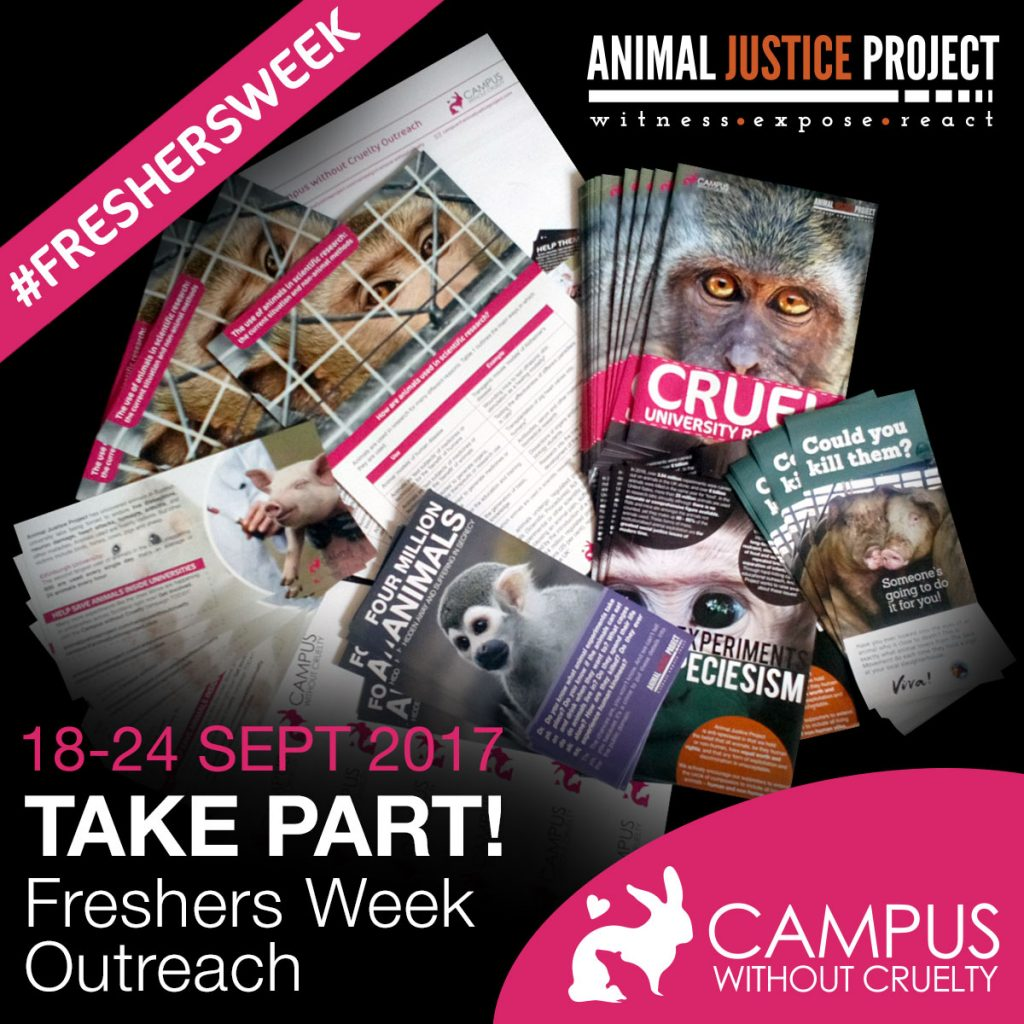 Take part in Freshers Week Outreach!