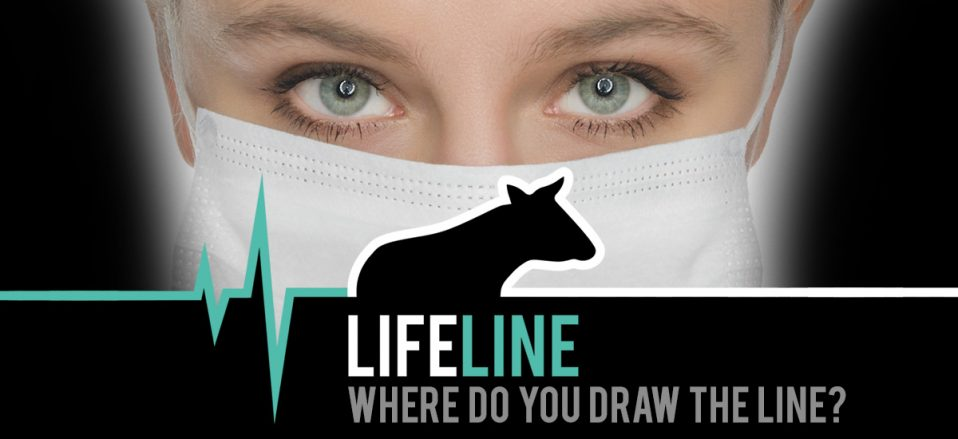 Breaking New Campaign Launch Lifeline Animal Justice Project